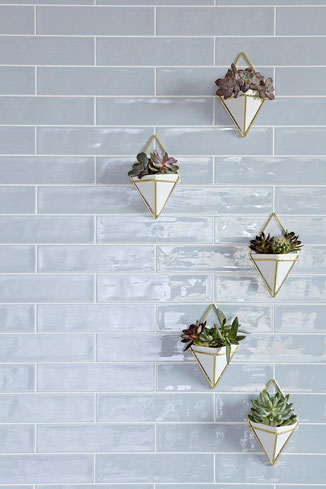 Pale gray blue ceramic tiles on a wall. There are five diamond-shaped white and gold planters filled with succulents hanging on the wall.