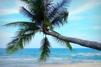Koh Samui, Thailand, Reisetipps, Reiseführer, Sehenswürdigkeiten, Wissenswertes, Die Traumreiser