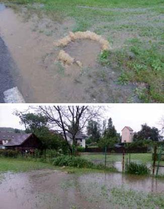 Betroffene Grundstücke im Ortsteil Mühl: Fäkalien wurden in  den Garten gespült.