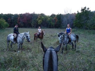 Выезд группой в лес