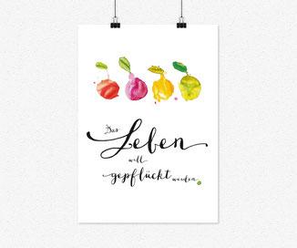 A4 Plakat- Das leben will gepflückt werden, 4 früchte