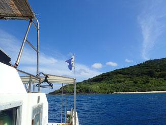 石垣島でのんびりダイビング「石垣島大崎」ヒートハートクラブ