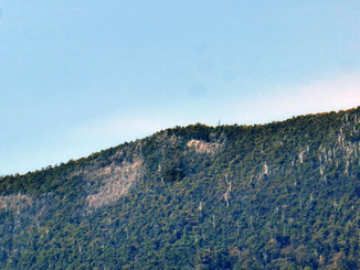 Rock outcrop on Mt Cygnet – my destination