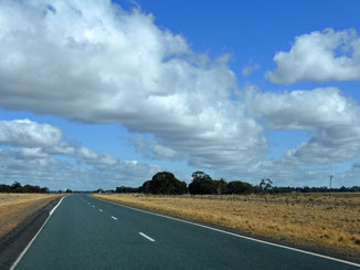 Cloud streets over the Newell Highway