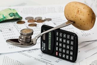 Haushalt organisieren - Geld: Ausgaben kontrollieren