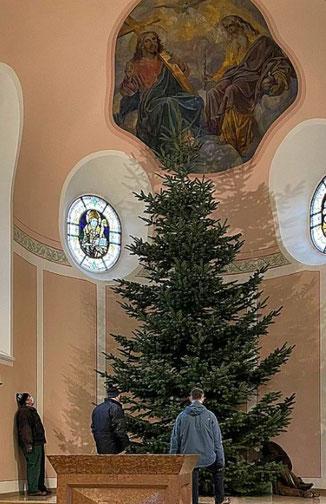 Foto mit nicht geschmücktem Weihnachtsbaum