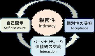 親密性の形成プロセス