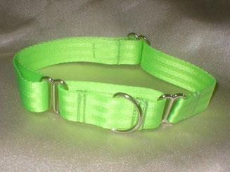 Martingale, Halsband, 2,5cm, Gurtband neongrün
