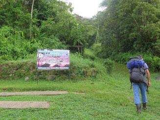 Los ging die Wanderung an der Rangerstation und dann hatten wir drei Tage lang nur uns und den Wald.