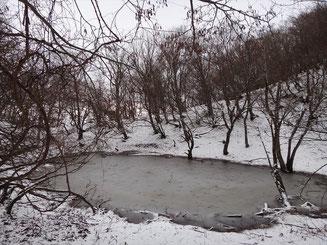 タイジョウへの途中にある池