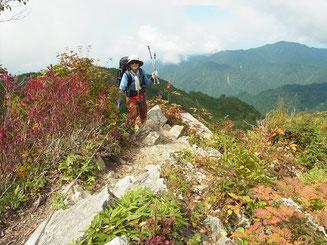 少し下って、また登り、ヤセ尾根の岩場を越える