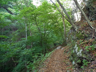 薄川ぞいにつけられた登山道をゆく