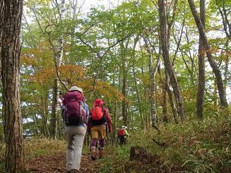 上日川峠を出発。紅葉し始めた登山道をゆく