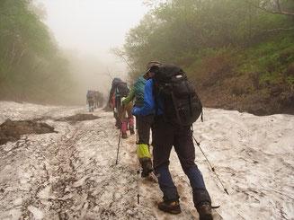 ガスの中、コマドリ沢の雪渓を登る(アイゼンなし)