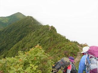 サワガニ山を越えるとやせ尾根の稜線です