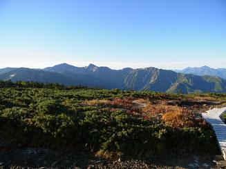 朝日岳山頂から白馬岳、旭岳、右手奥に剱岳、大日岳方面