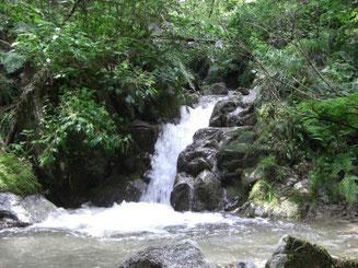 大きな釜のある滝