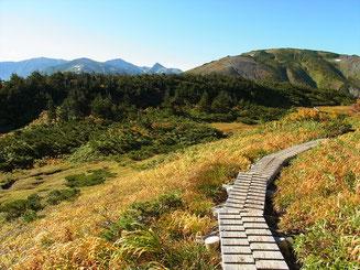 照葉の池近くから振り返って朝日岳方面