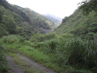 二つ目の大きな堰堤を越えて入渓