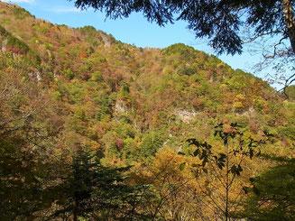 「鈴が坂」を登りきると紅葉が待っていた