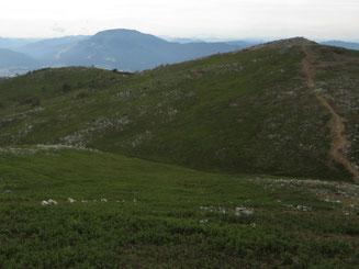 現在の山頂から望む経塚山辺り。経塚頂上からの山道周辺など裸地状態に。