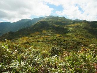 黒岩山山頂(1,623.6m)にて。ここまでのルートが見えます。