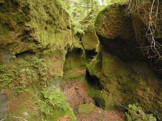 支笏湖畔 苔の洞門 ここより先は行けません