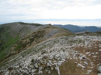 岩ゴツゴツの西南尾根。とっても歩きにくい。