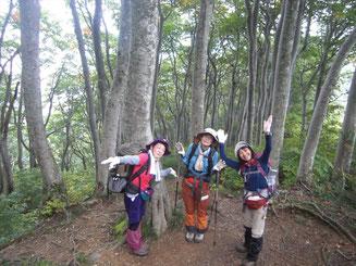 菊石山~下駒ケ岳間はきれいなブナ林が続く
