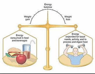 energy balance, healthy weight loss, healthy fitness, health and diet