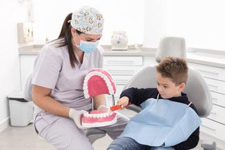 higiene, prevencion, dientes, cepillo, cepillar, cepillado, tecnica de higiene, instrucciones, clínica dental integral bruno negri, bruno dentista, pilar de la horadada, calidad, implantes, dentista, dolor muela, empaste, bruno negri, odontologo, doctor,