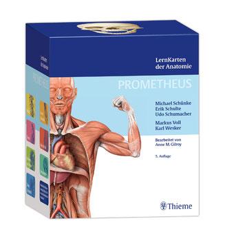 PROMETHEUS LernKarten der Anatomie - Prüfungsrelevante Inhalte aus der gesamten Anatomie