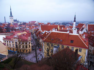 Tallinn Old City Jewish tour
