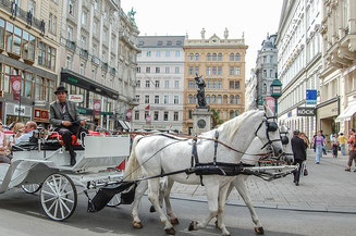On the Streets of Vienna