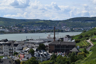 The Rhine Rudesheim