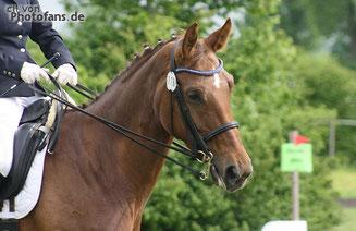 Copyright by cll von www.photofans.de