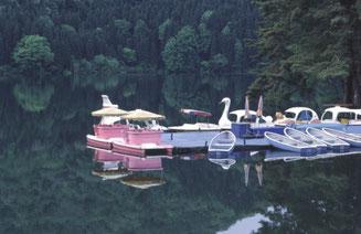 春のボート