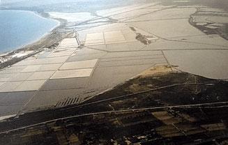 Balsas de agua de la zona salinera del Piner, en Santa Pola, Alicante.