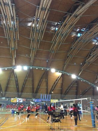 初めて訪れた郡上市総合スポーツセンターの天井にビックリ。 丸太がそのまま使われてるしー!