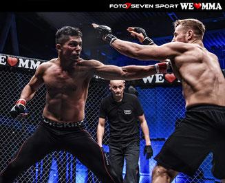 WE LOVE MMA - Stuttgart 28.11.2015 CARL BENZ ARENA