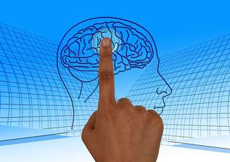 Wir können unser Gehirn wieder einschalten und auch in Stressituationen vernetzt bleiben.