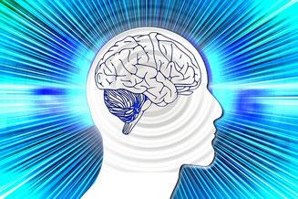 Stress blockiert die neuronalen Reizleitungen im Gehirn.