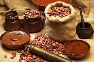 Les fèves de cacao sont utilisées pour la fabrication du chocolat.