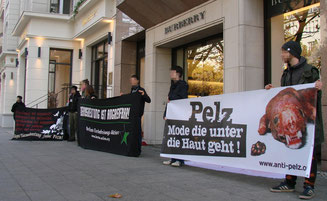 Anti Pelz Kampagne