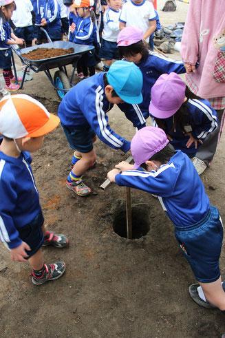 幼稚園 井戸掘りできる