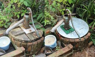 井戸蓋更新前後