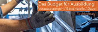 Budget für Arbeit im BTHG