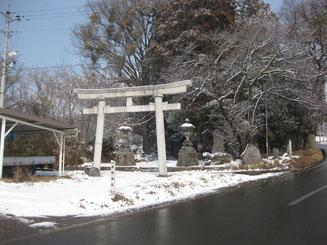 滋野神社(新張)の鳥居
