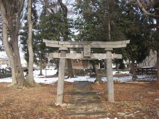 滋野神社(海善寺)の杜