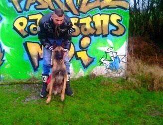 adoption chien en refuge - société protectrice animaux - Bréhand - Côtes d'Armor - Bretagne